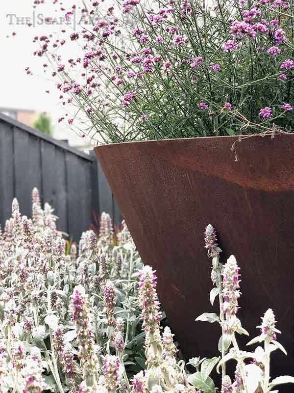 landscaper_ballarat_new-garden_alfredton_04.jpg