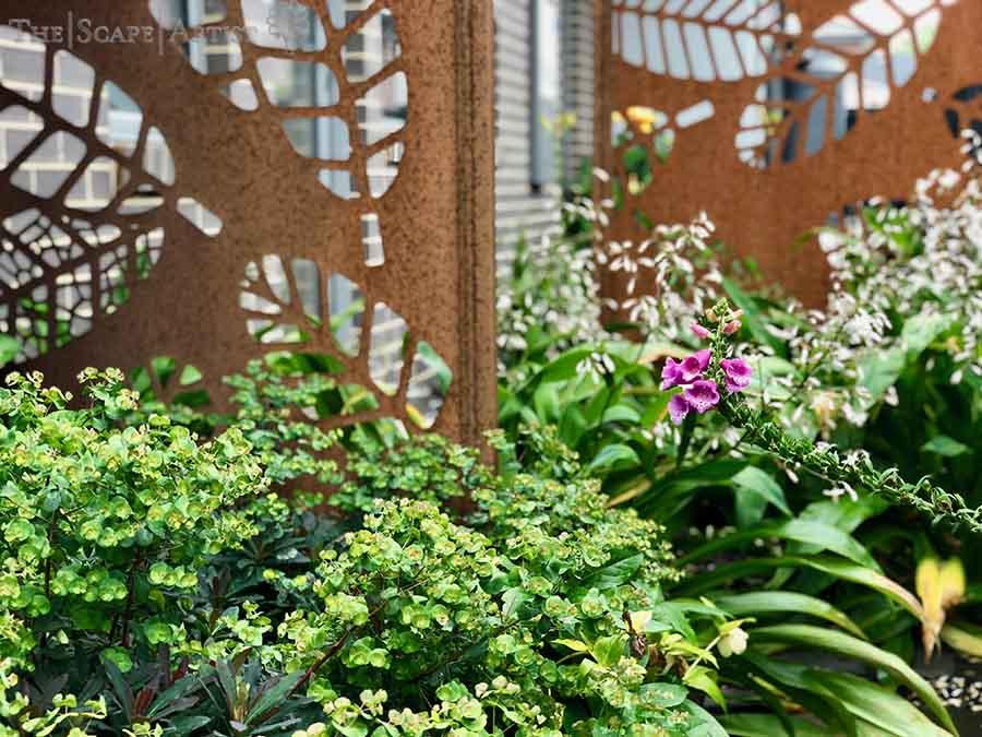 landscaper_ballarat_new-garden_alfredton_15.jpg
