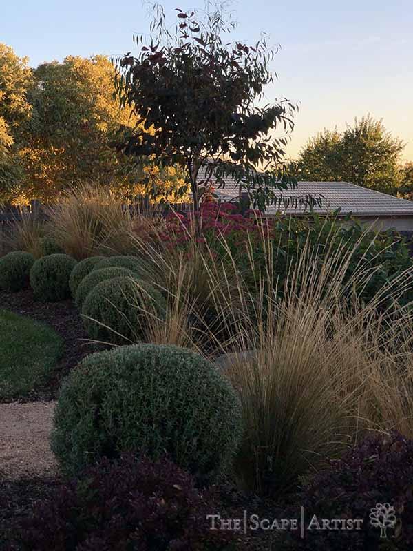 landscaping-garden-design-ballarat-moola_18.jpg