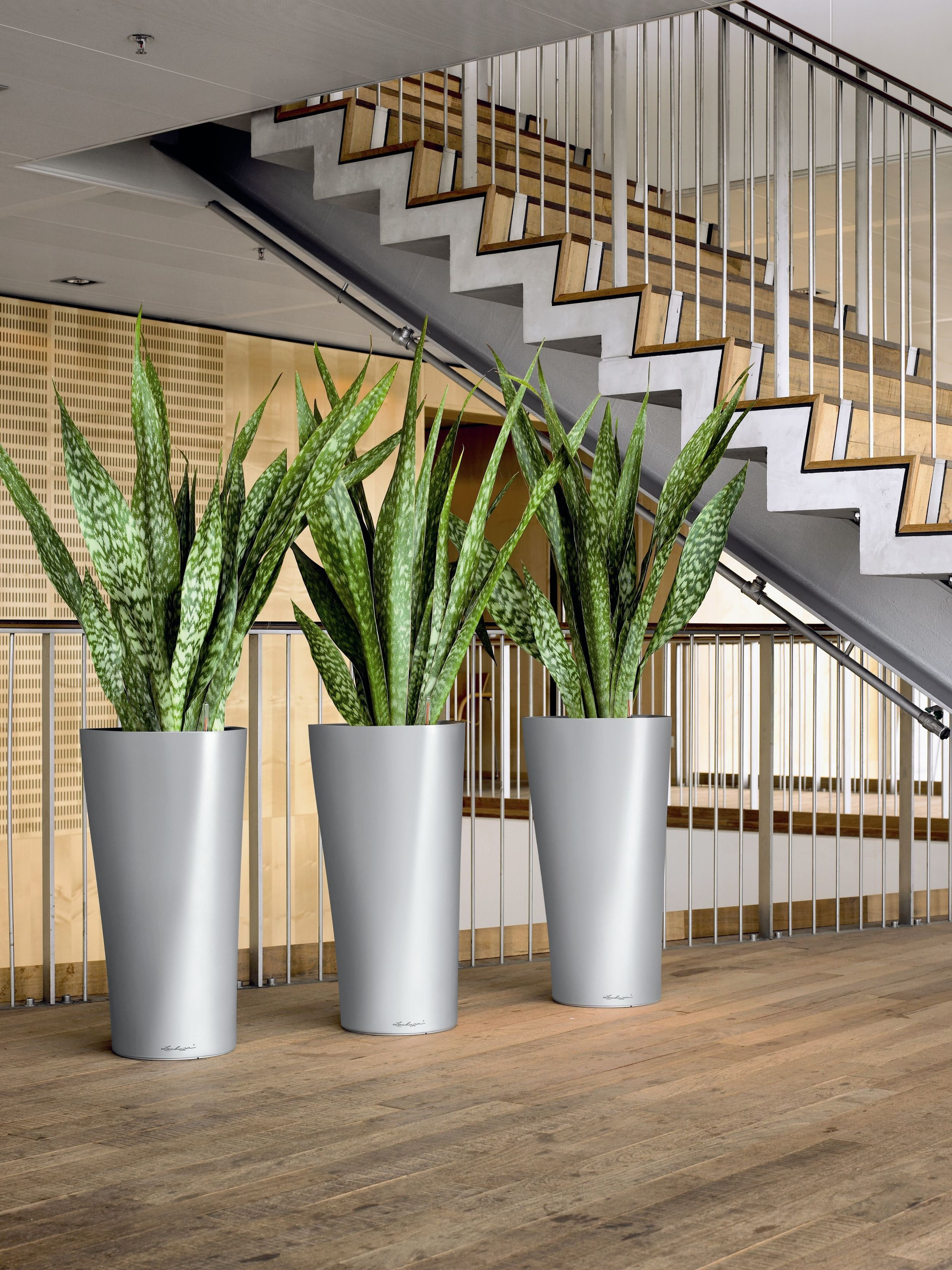 Delta 40 Silver - 3 planters at staircase.jpg