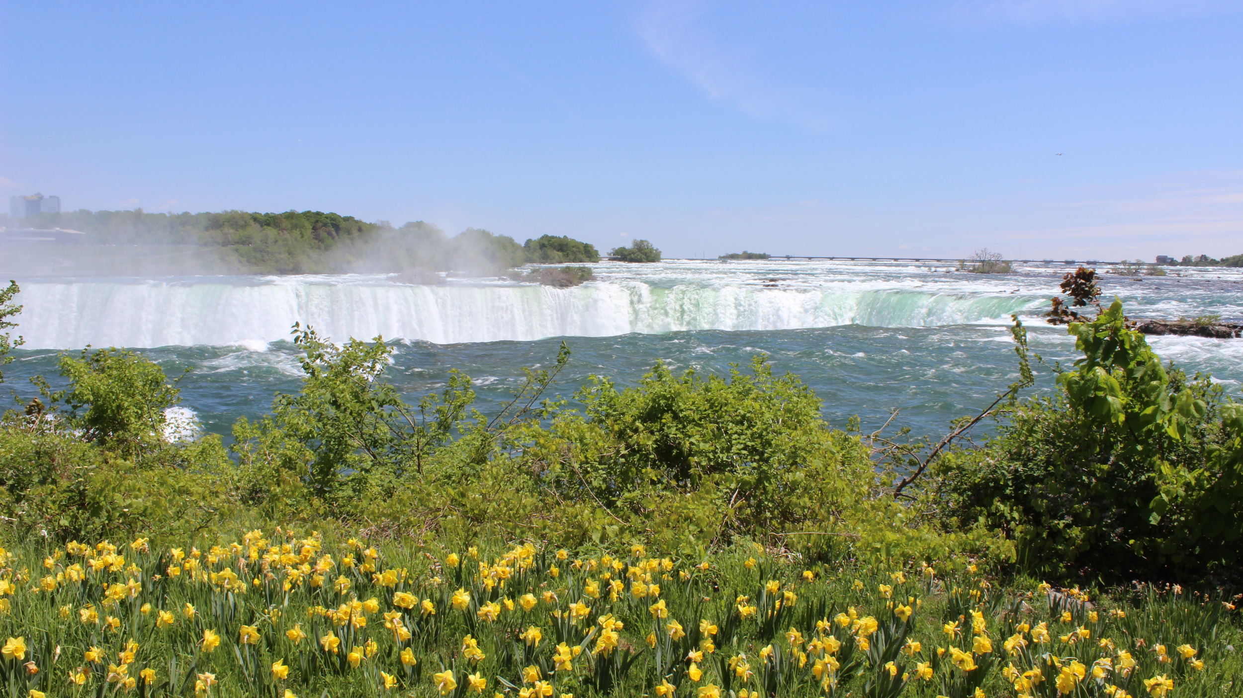 Falls and Flowers