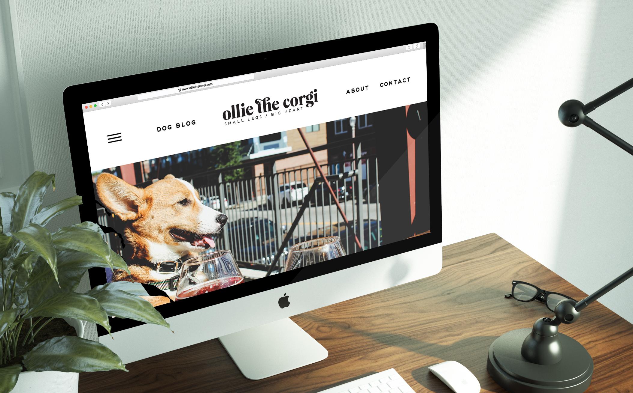 mod-co-branding-header.jpg