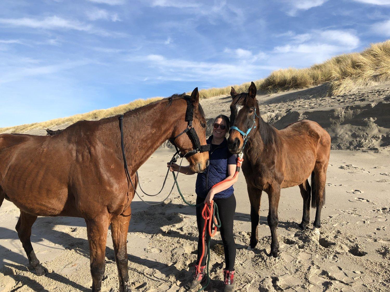 Oregon Horse Rescue