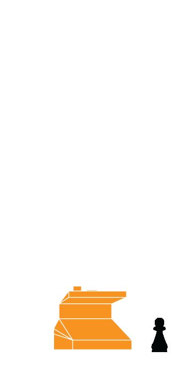 ST-PAWN-07.jpg