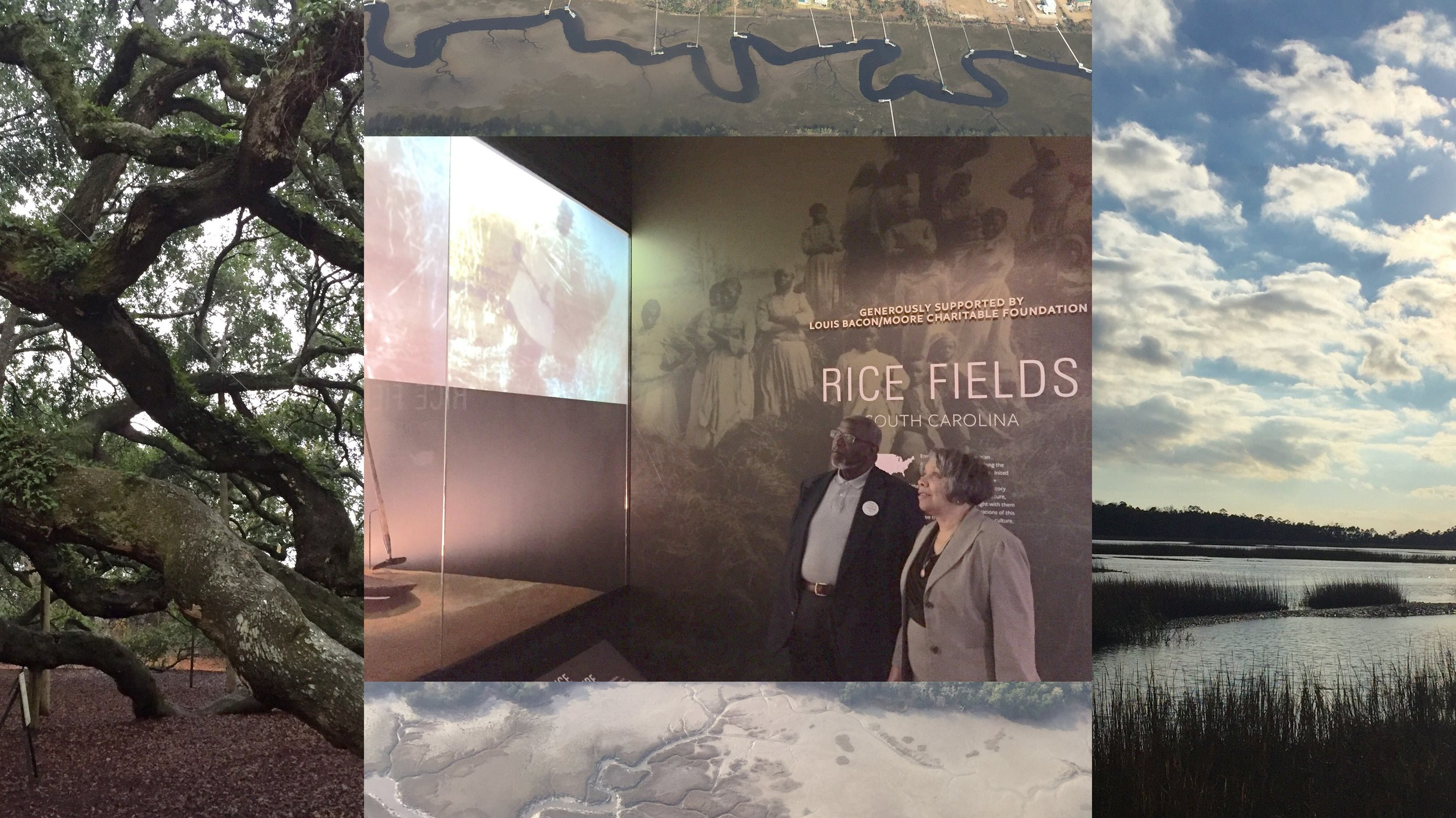 Dr. Emily Moore stands in awe of the Smithsonian NMAAHC's South Carolina Rice Fields exhibit with her husband, Dr. Herman Blake, before visiting the Emmett Till Memorial exhibit. The two are framed by two iconic South Carolina Lowcountry landmarks: historic Angel Oak on John's Island and a salt marsh at Mosquito Beach, a popular social destination for African Americans during the Jim Crow Era. Photo credit: Dr. Rolando Herts, Mississippi Delta National Heritage Area.