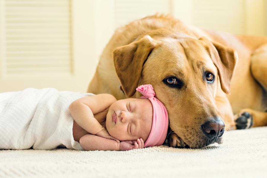 newborn photographer_01