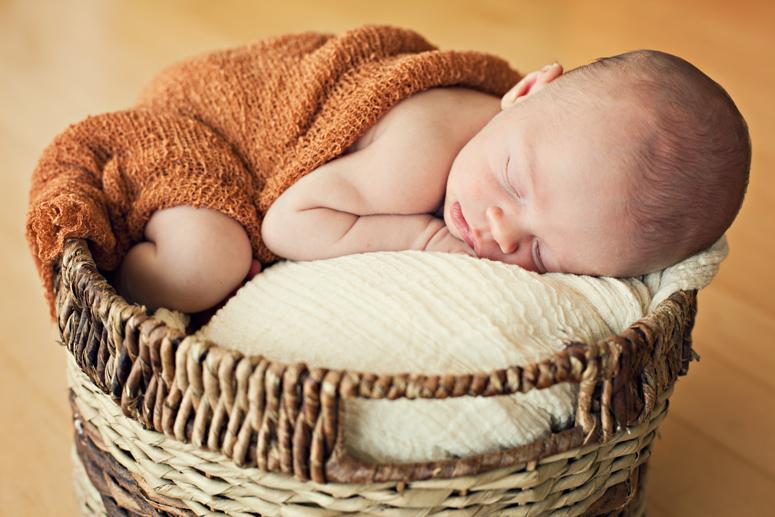 newborn portrait_11