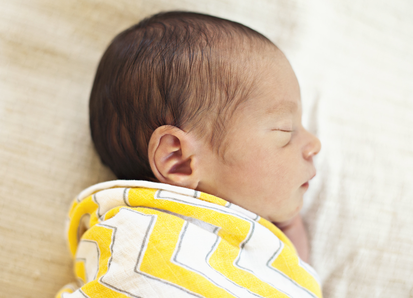 newborn portrait_01