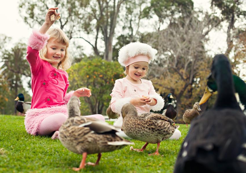 children photographer santa barbara_27