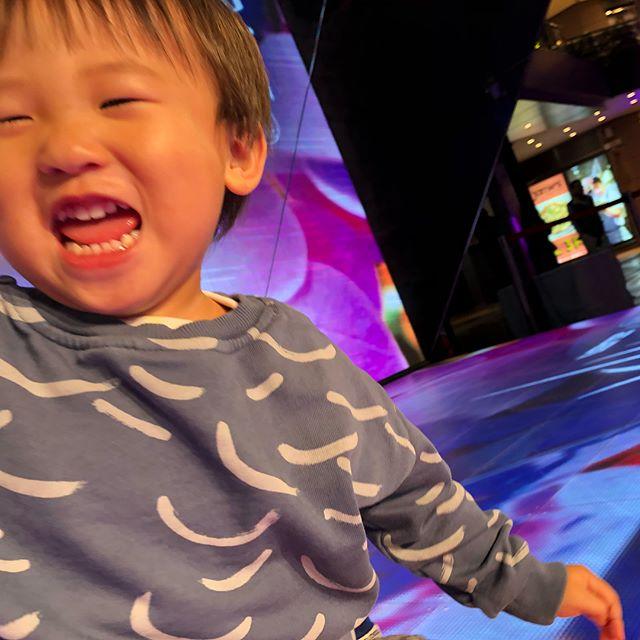 母さん取材受けてる間もはしゃぎまくるお豆W ま、いいや、そんな楽しそうなら😊♥️😊♥️ しかしエネルギー玉みたいな子だなぁ ほんといつも楽しそうw #台北💓#くっつき坊や #asus
