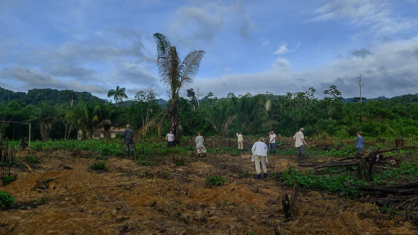 Inti Wara Yassi volunteer work