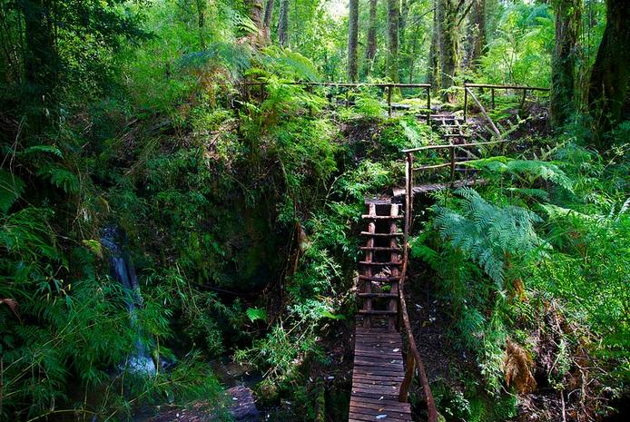 Parque Pumalin nature; Pumalin Park landscapes