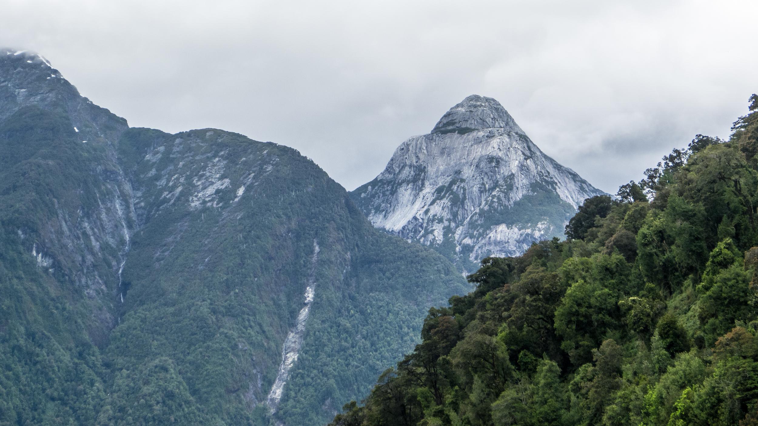 Pumalin Mountains, fjords, nature, rainforest, landscapes