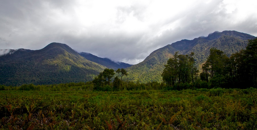View from El Volcan campground, Pumalin