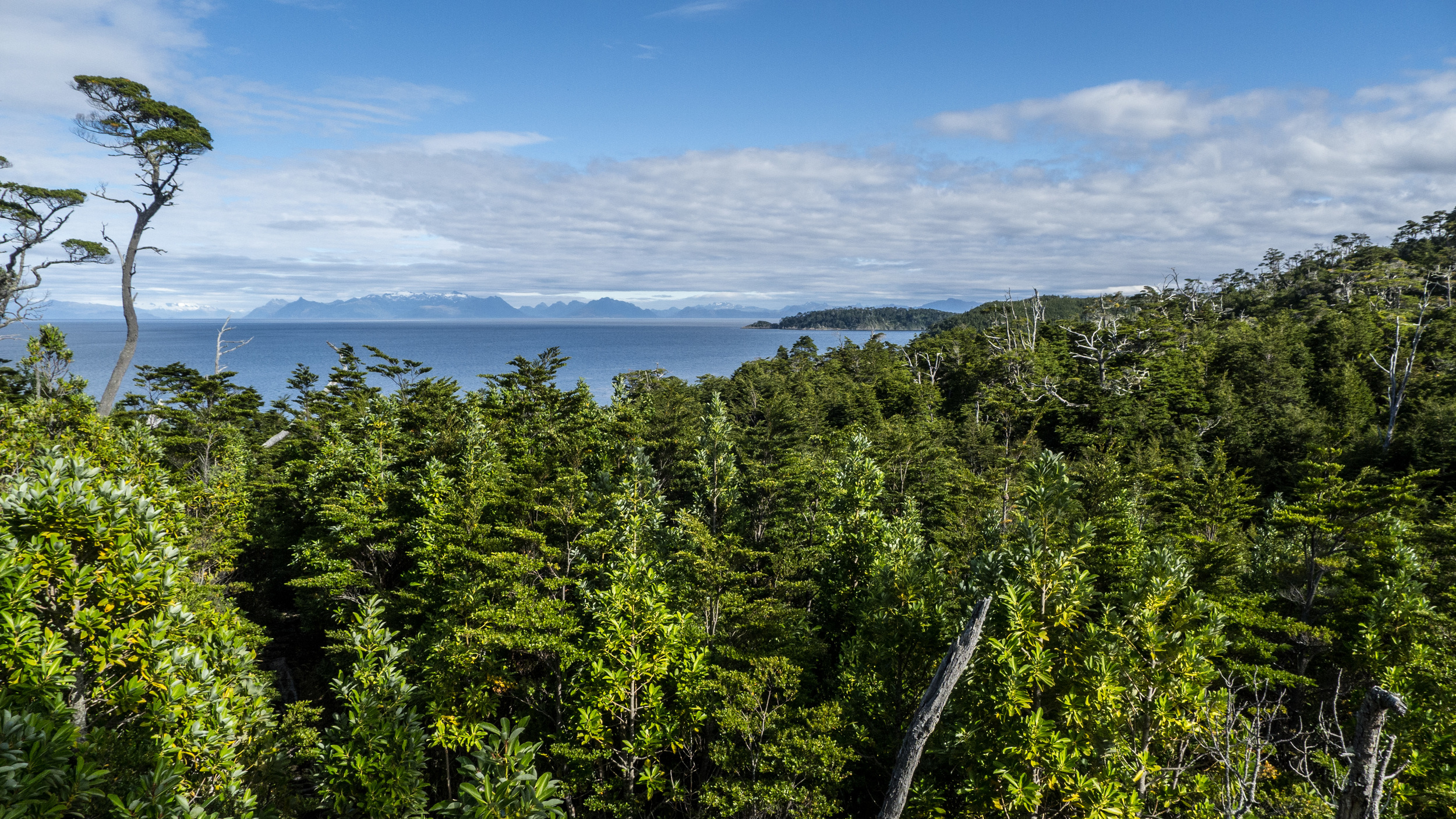 View of Tierra del Fuego from the Cabo Froward Hike