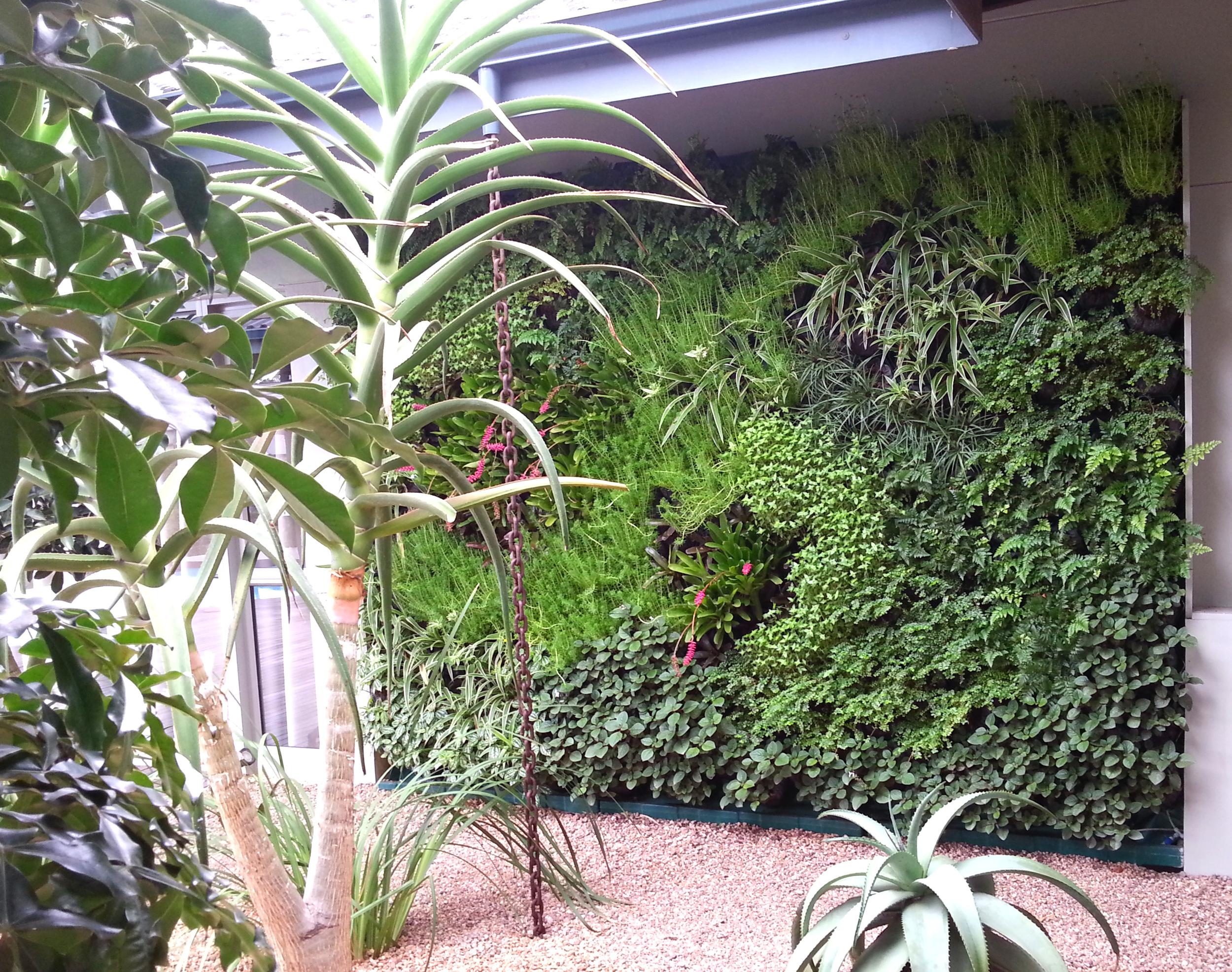GroSpace vertical garden 16.jpg