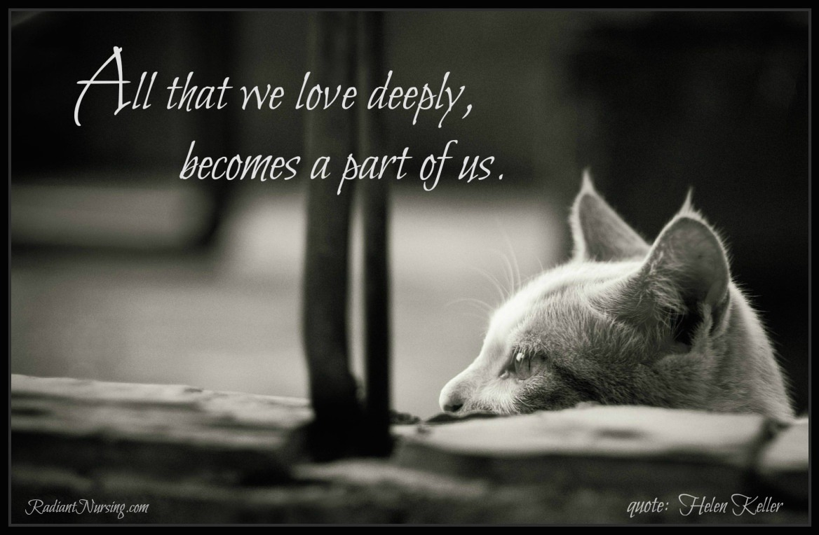 All that we love deeply, becomes a part of us. –Helen Keller