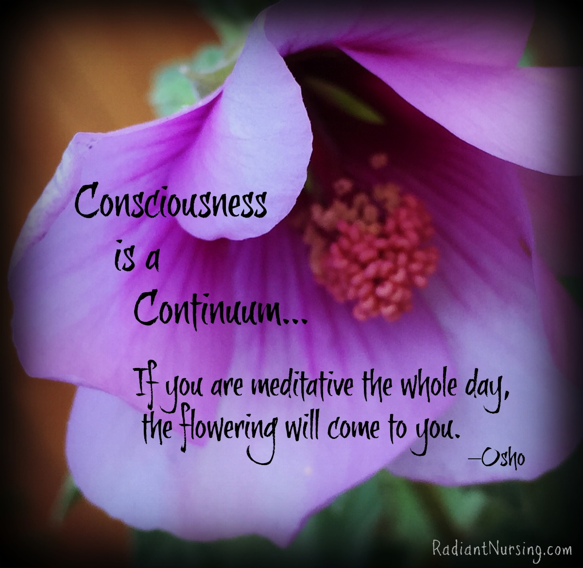 Consciousness is a continuum.