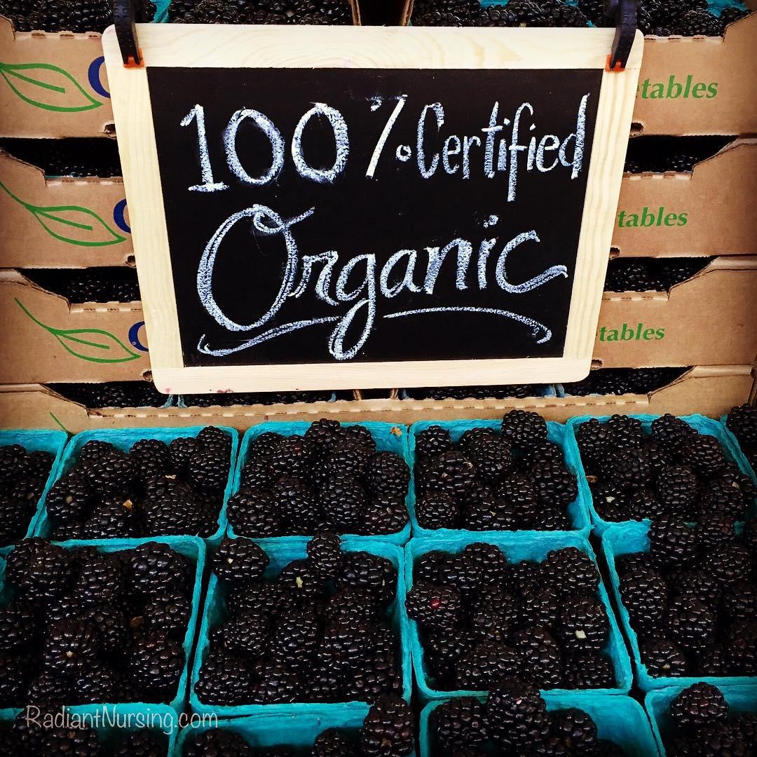 Organic blackberries at the Davis farmers market.