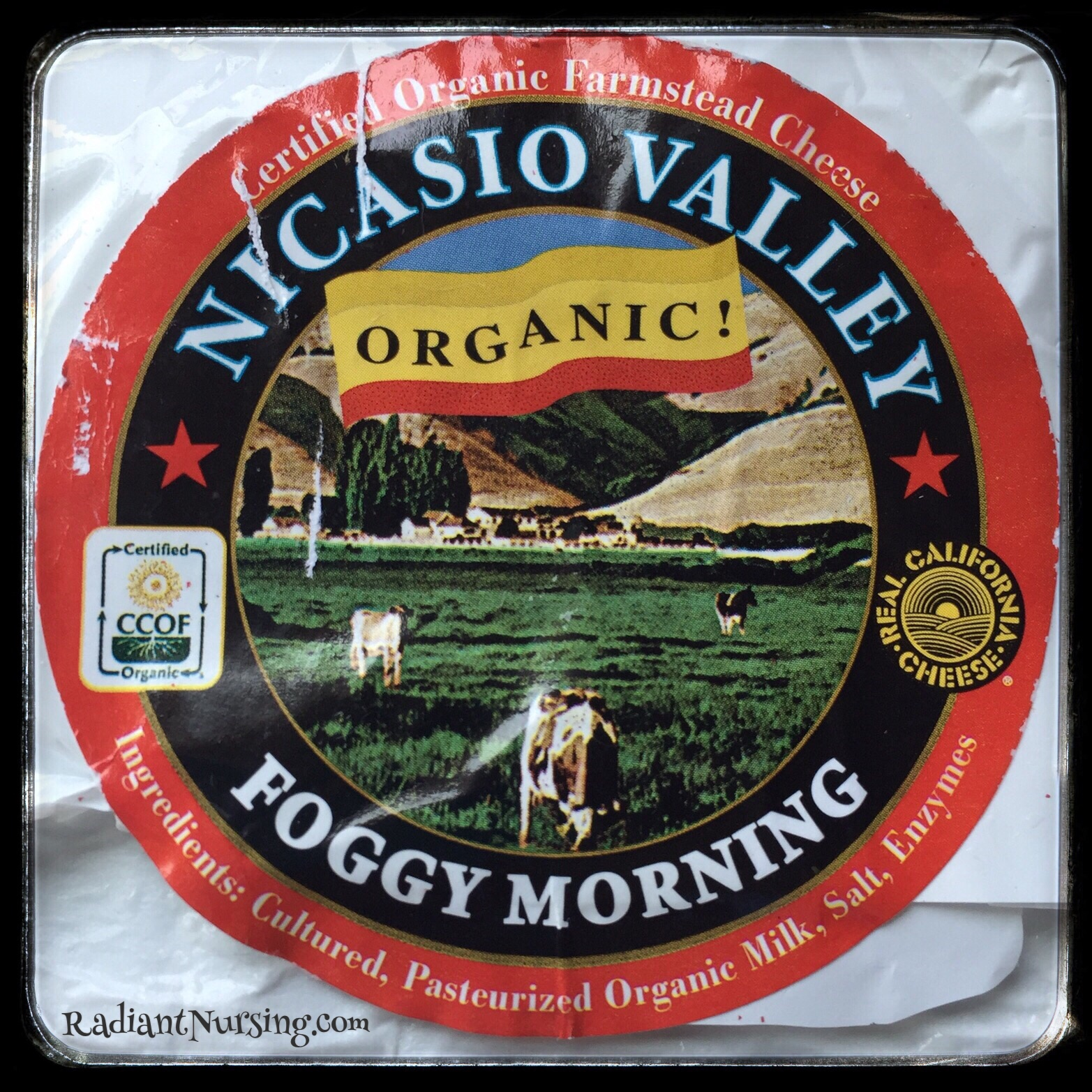 Organic cheese, fresh from the farm at the farmers market.