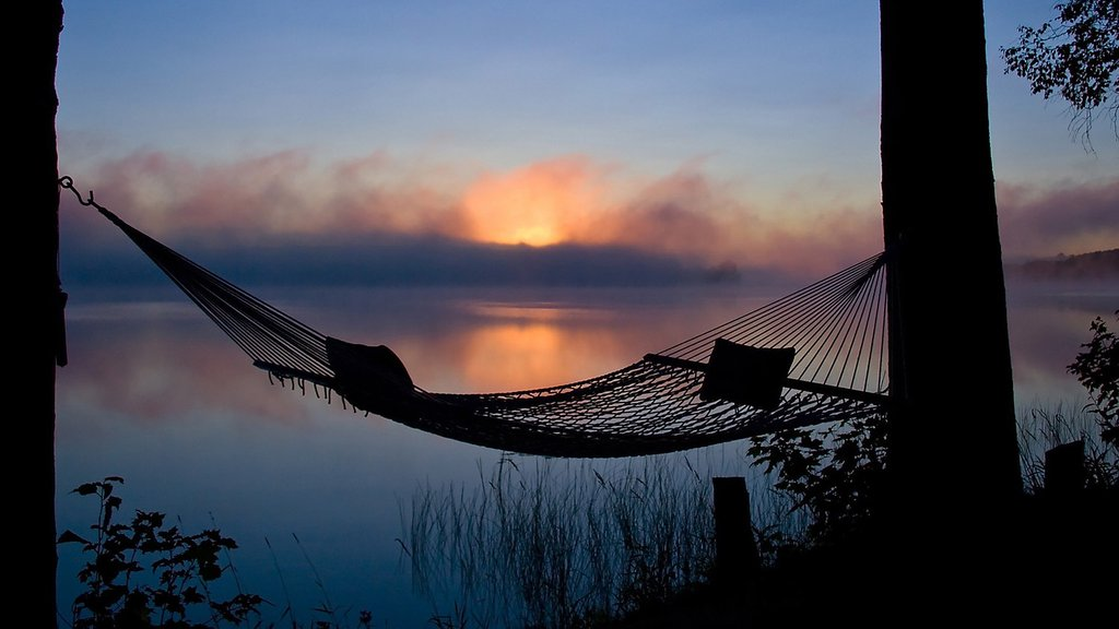 We have a holiday for hammocks on July 22, but of course, we can enjoy hammocks any day.