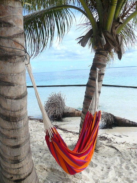 Hammock Day is celebrated on July 22. Time to relax and sway in a hammock.