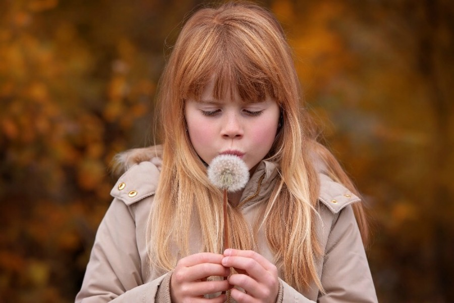 Make a wish on a dandelion.