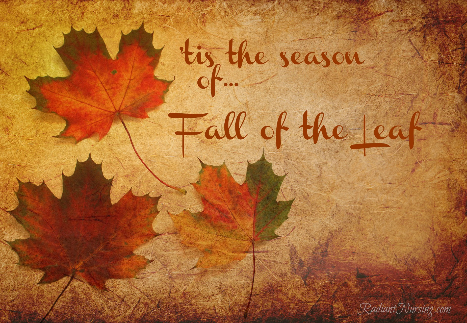 In the 1540s in England, we used to call the season of fall, Fall of the Leaf.