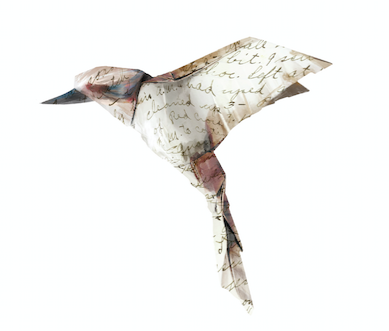 Write Way Home Bird Images.png