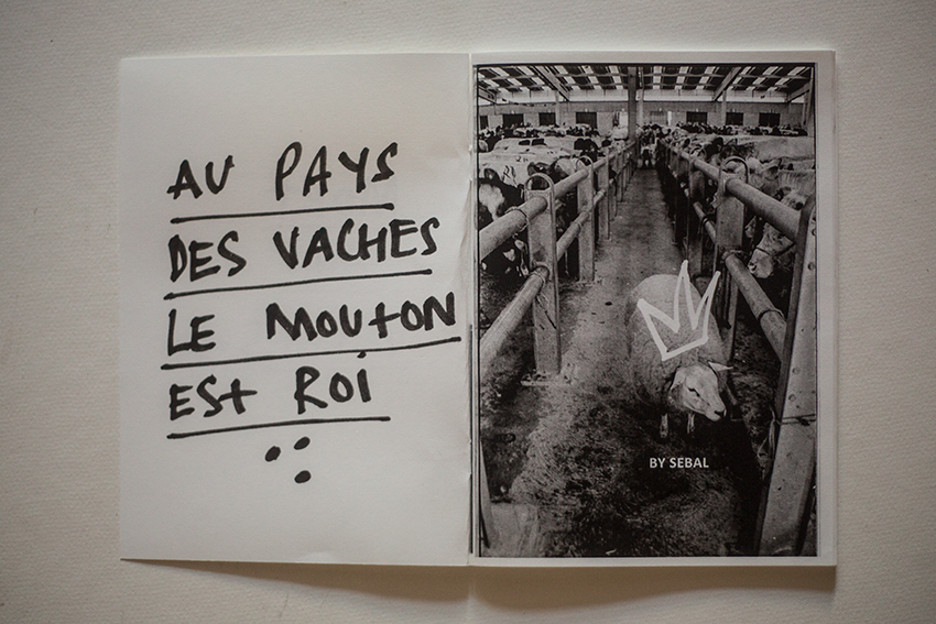 mort-aux-vaches-sebal-sebastien-alouf-ed-turbulent-p2.jpg