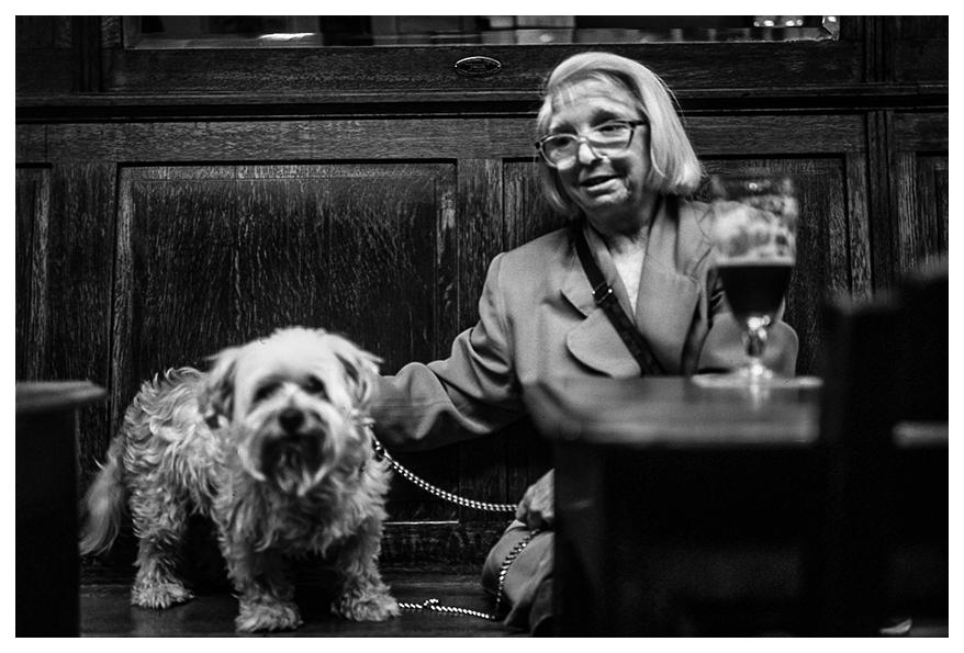 Lady-Barfly-dog-Sebal_sebastien-Alouf.jpg