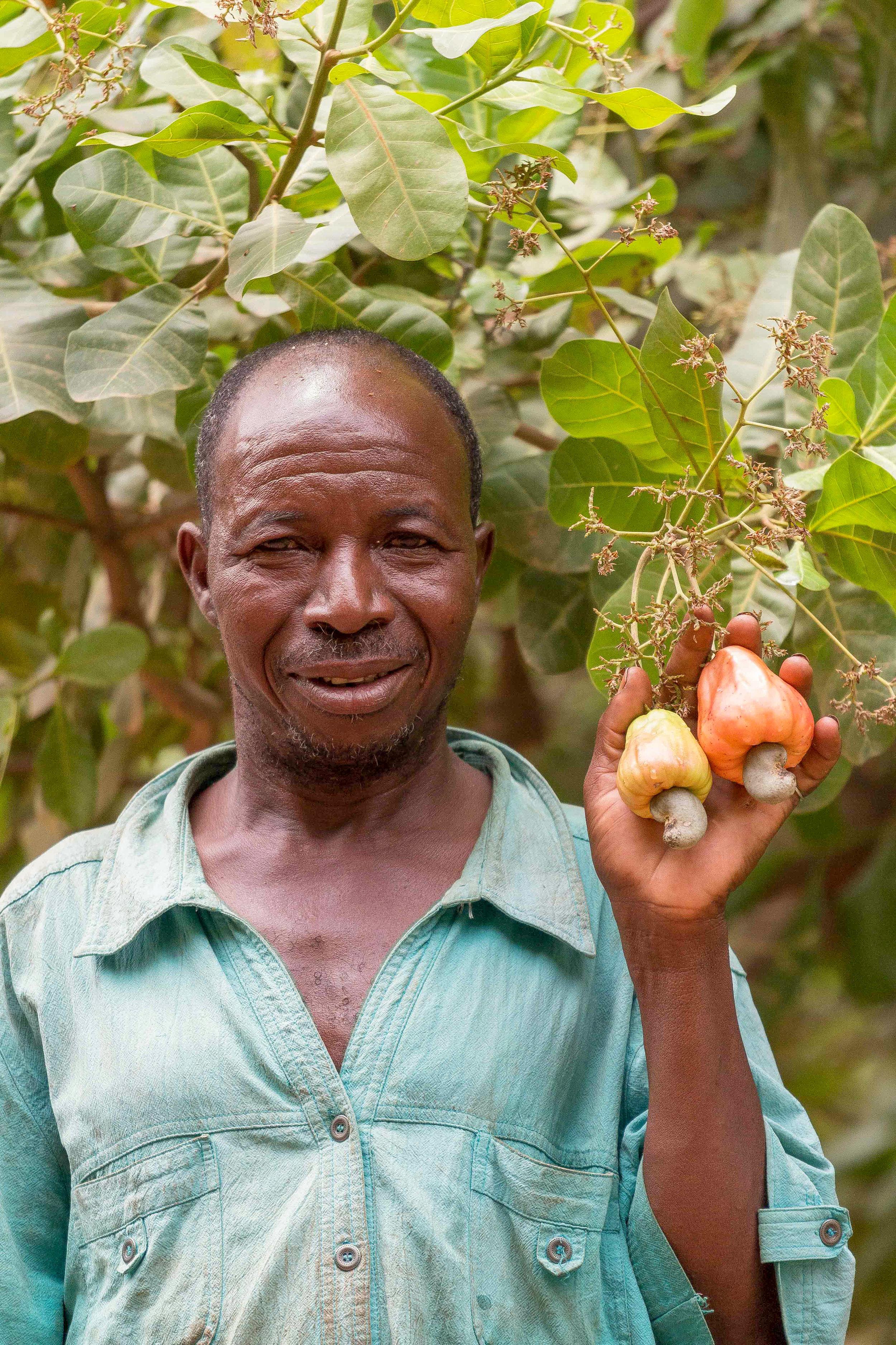 Dag allemaal - Wij zijn Noel, Aliseta, Zalisa, Fatao, Farimata, Moise en Kabre. Met zo'n 900 andere collega's werken we bij Anatrans SRL, hier in Bobo in Burkina Faso. We verwerken lokaal de cashew van de boeren in de omgeving. Da's op zich best bijzonder als je de cashewketen een beetje kent. De meeste cashew gaat namelijk vanuit hier, onbewerkt, eerst naar Azië. Daar wordt de cashew uit de dop gehaald en gaat dan naar jou in Europa. Gek toch? Wij willen die banen hier in plaats van ontwikkelingshulp en afhankelijkheid van die hulp. Met een echte baan en een normaal inkomen komen wij uit de armoede, kunnen onze kinderen naar school en gaat het vliegwiel aan.Hier in de buurt zijn nog heel veel mogelijkheden om banen te creëren, en wel op zo een manier dat het inkomen van boeren hier omhoog gaat, minder voedsel verspilt wordt én ons (en dus ook jouw) milieu minder wordt belast. Dat willen we samen met jullie en Yespers oppakken.Want wist je bijvoorbeeld het volgende?
