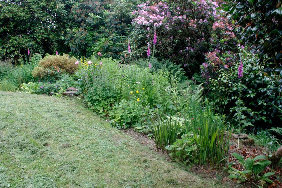 Cathys Garden.jpg
