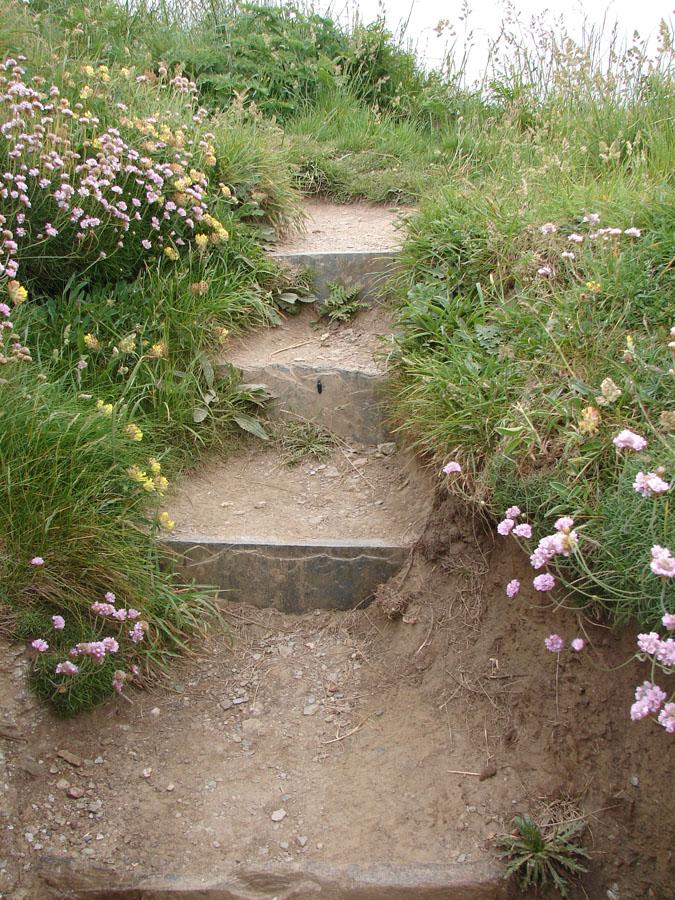 Path towards Tintagel.jpg
