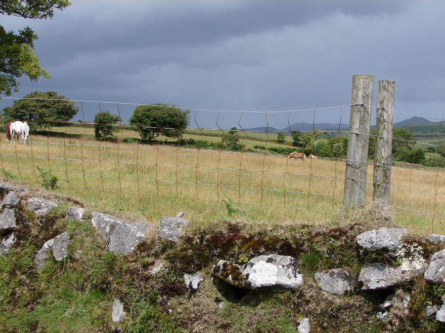 Wall near Higher Dewey.jpg