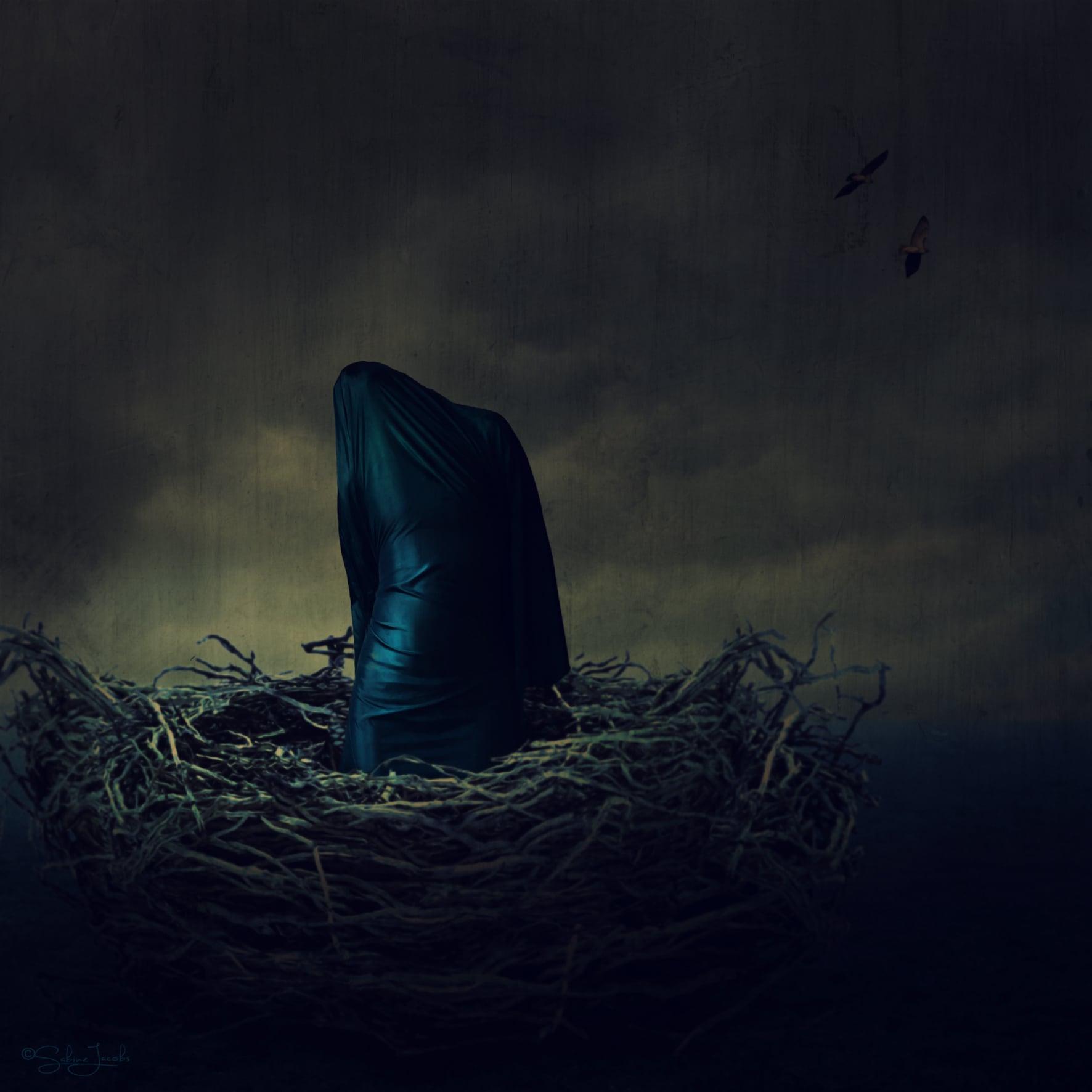 nest_fog_2.jpg