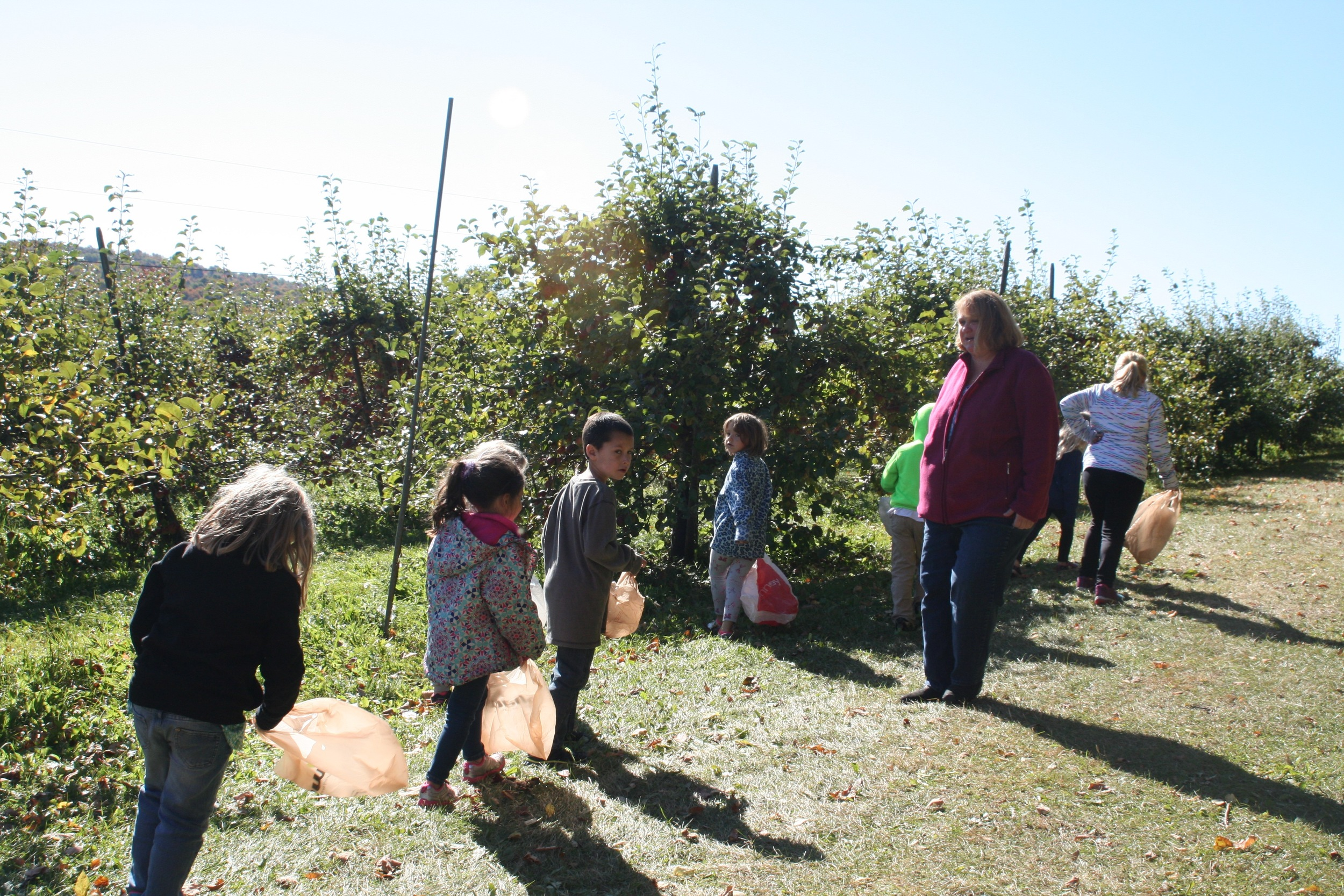 Vermont FEED & FARM TO SCHOOL NETWORK
