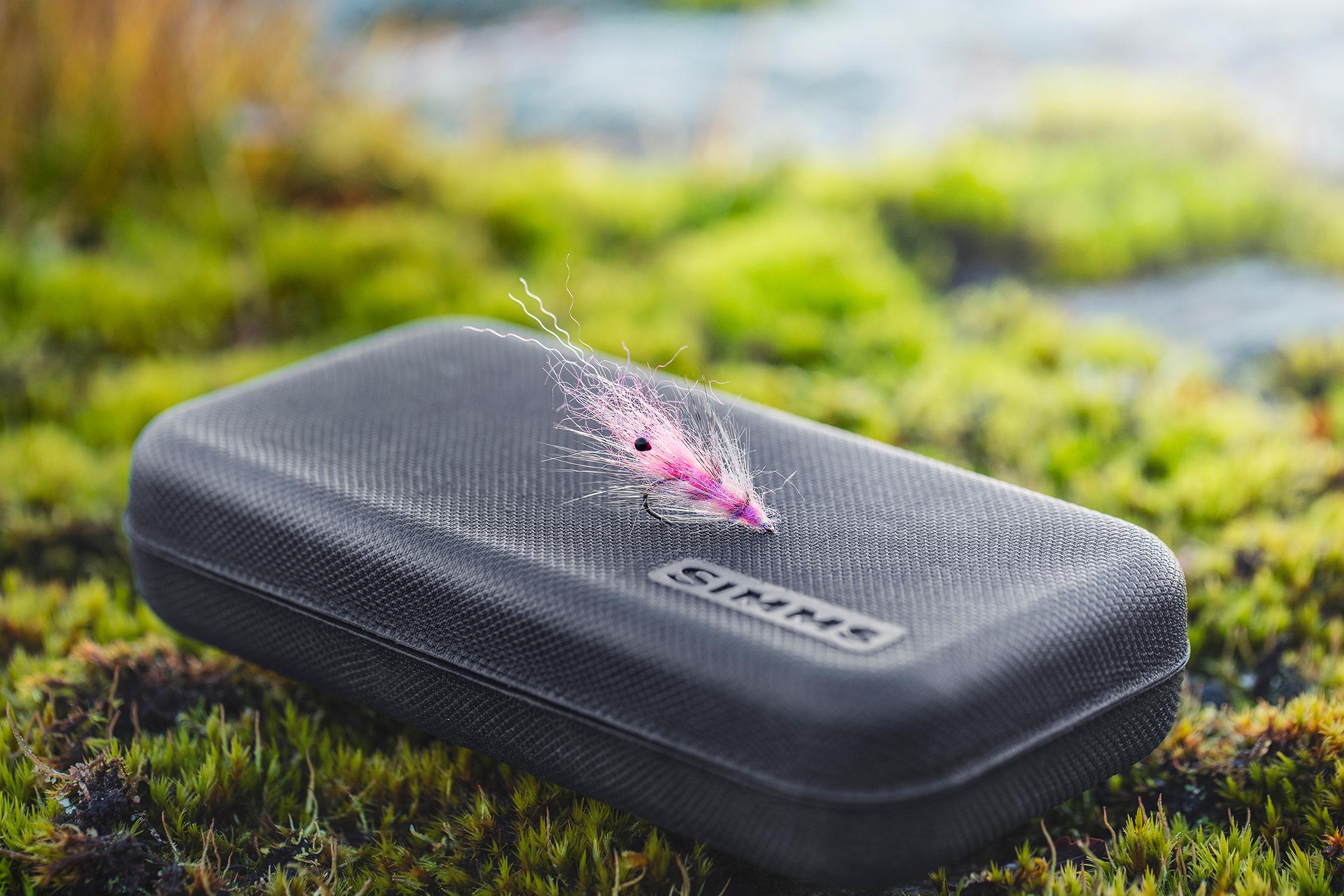 Pink-Shrimp3_low.jpg