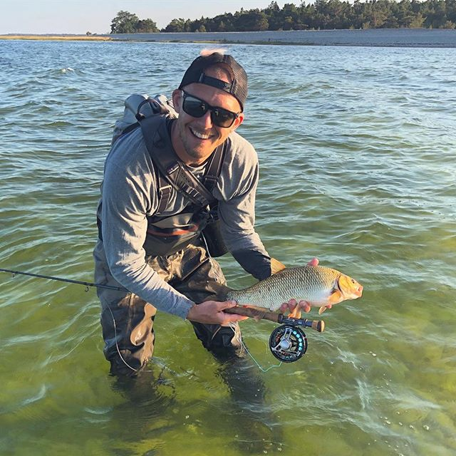 That's not a trout. But a fun fish to catch on the fly! Big schools of fish cruising the Gotland flats! #lucasflyfishing #flyfishing #fishing #ide #troutfishing #flyfishingjunkie #flyfishinglife
