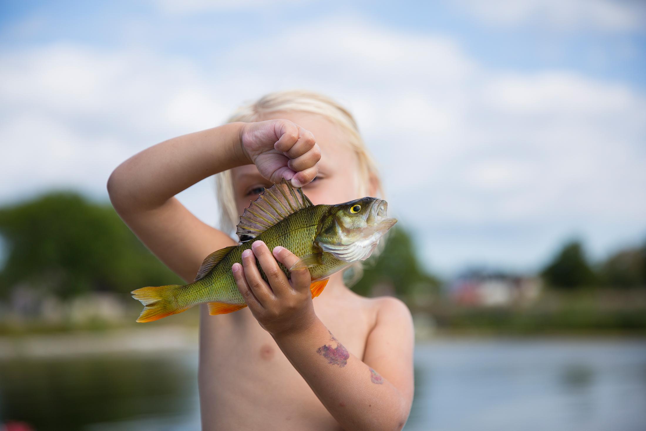 Lucasflyfishing-MG_9272.jpg