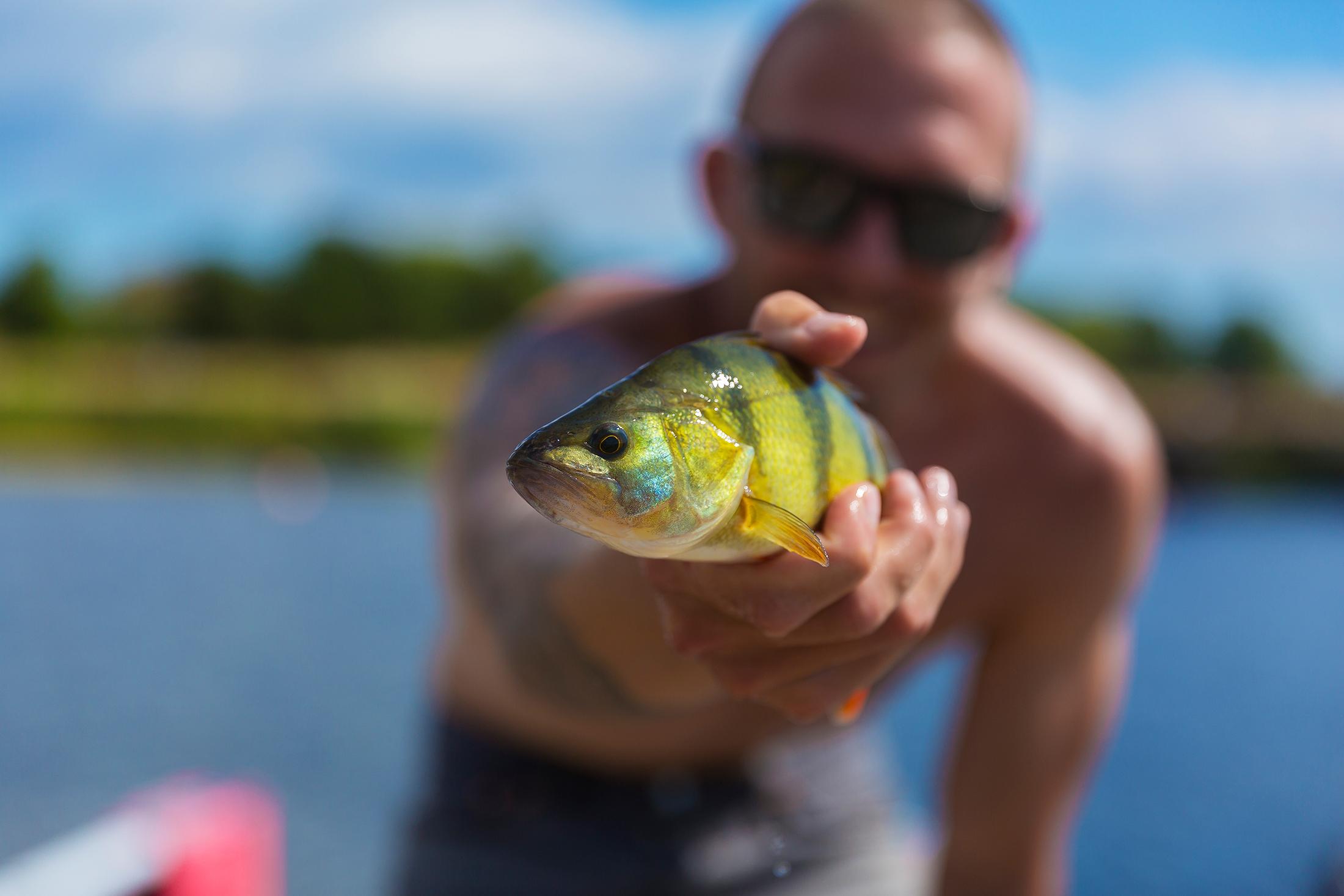 Lucasflyfishing-MG_9269.jpg