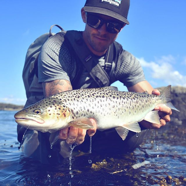 A nice day in the sun fishing for seatrout! Awesome to see these predators coming in fast over skinny water chasing baitfish!! 📷: @troutcastz #lucasflyfishing #seatrout #searun #searunbrowntrout #trout #troutfishing #havsöring #öring #meriforell #havørred #sjøørred #meerforelle #flyfishing #fishing #saltwaterflyfishing #coastalfyfishing