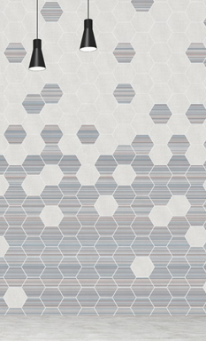 Hexagonal graphic print wall mural
