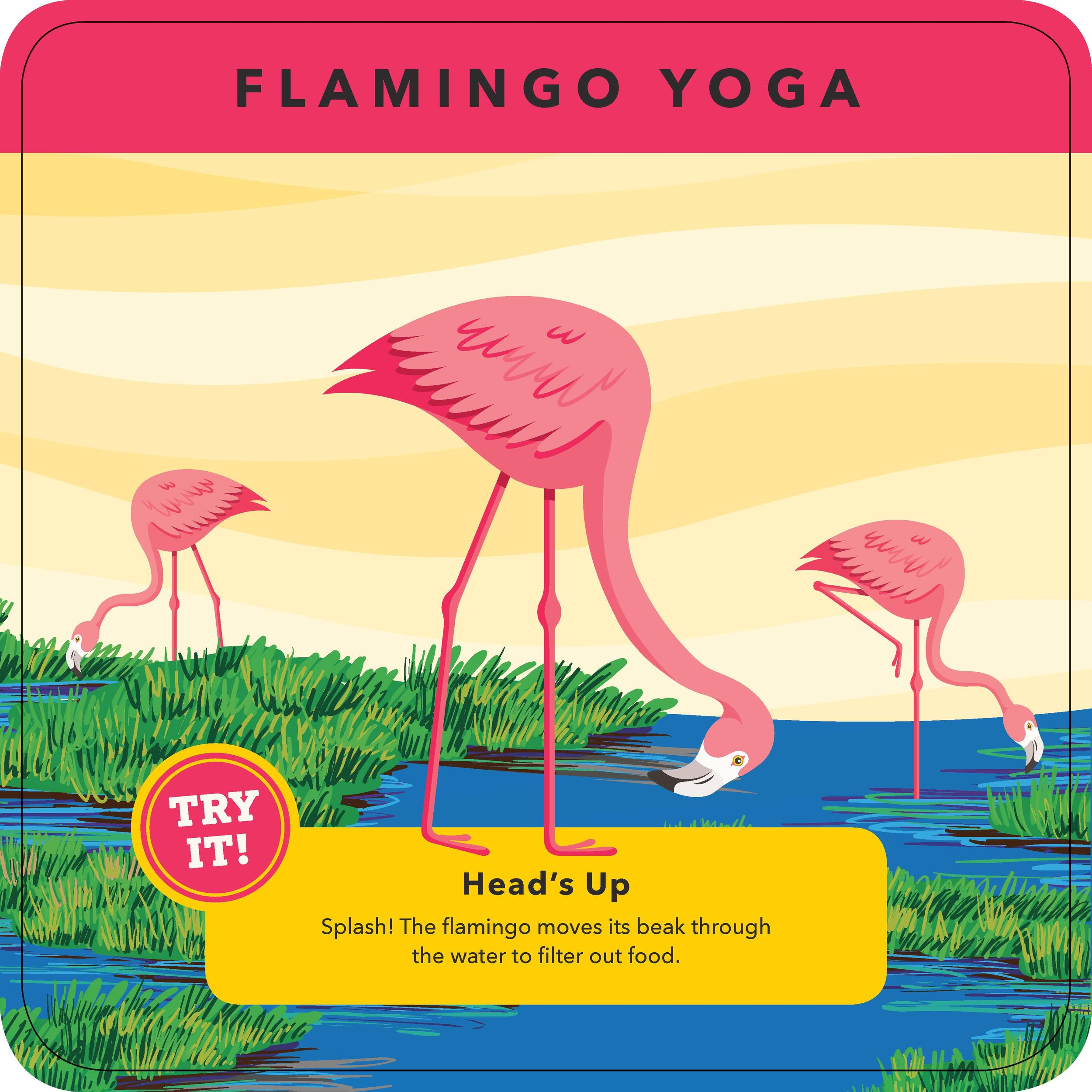 Flamingo yoga.jpg