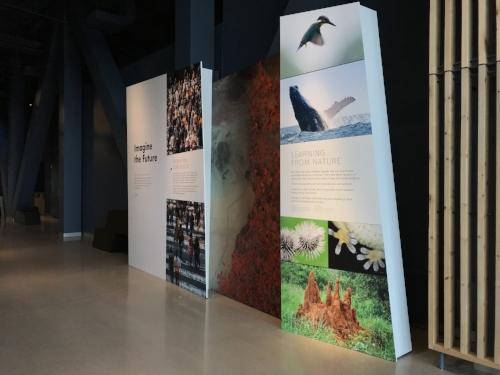 Bell-Museum_Imagining-the-Future