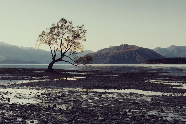 Nature_13.jpg