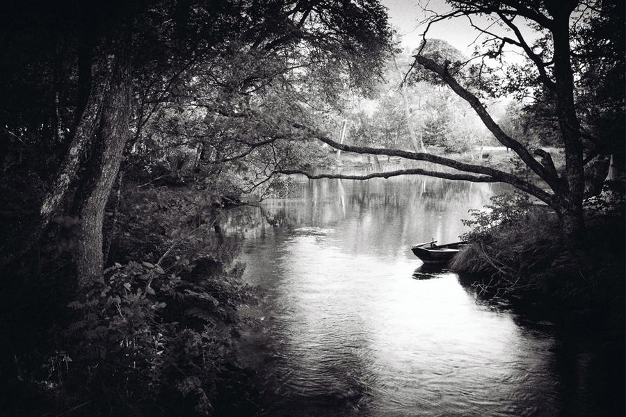 Nature_17.jpg