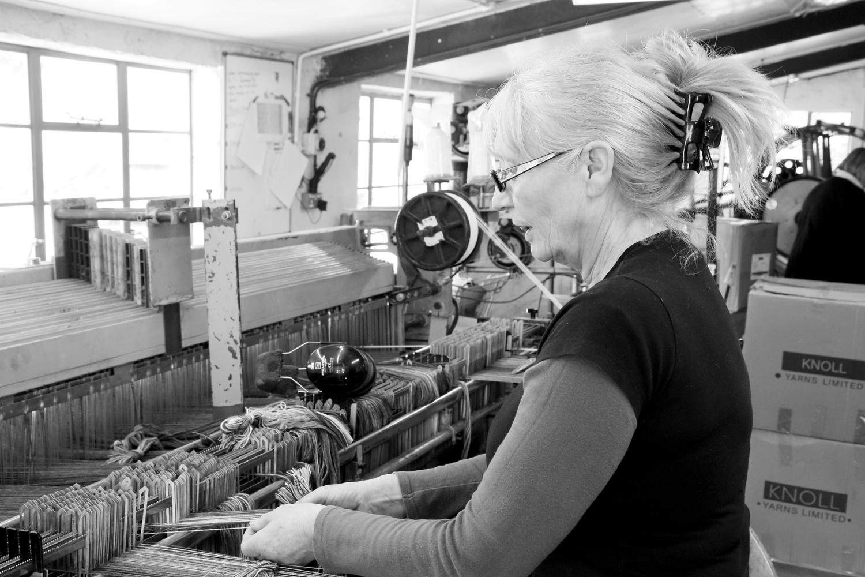 Melin Tregwynt - Ivy in the mill