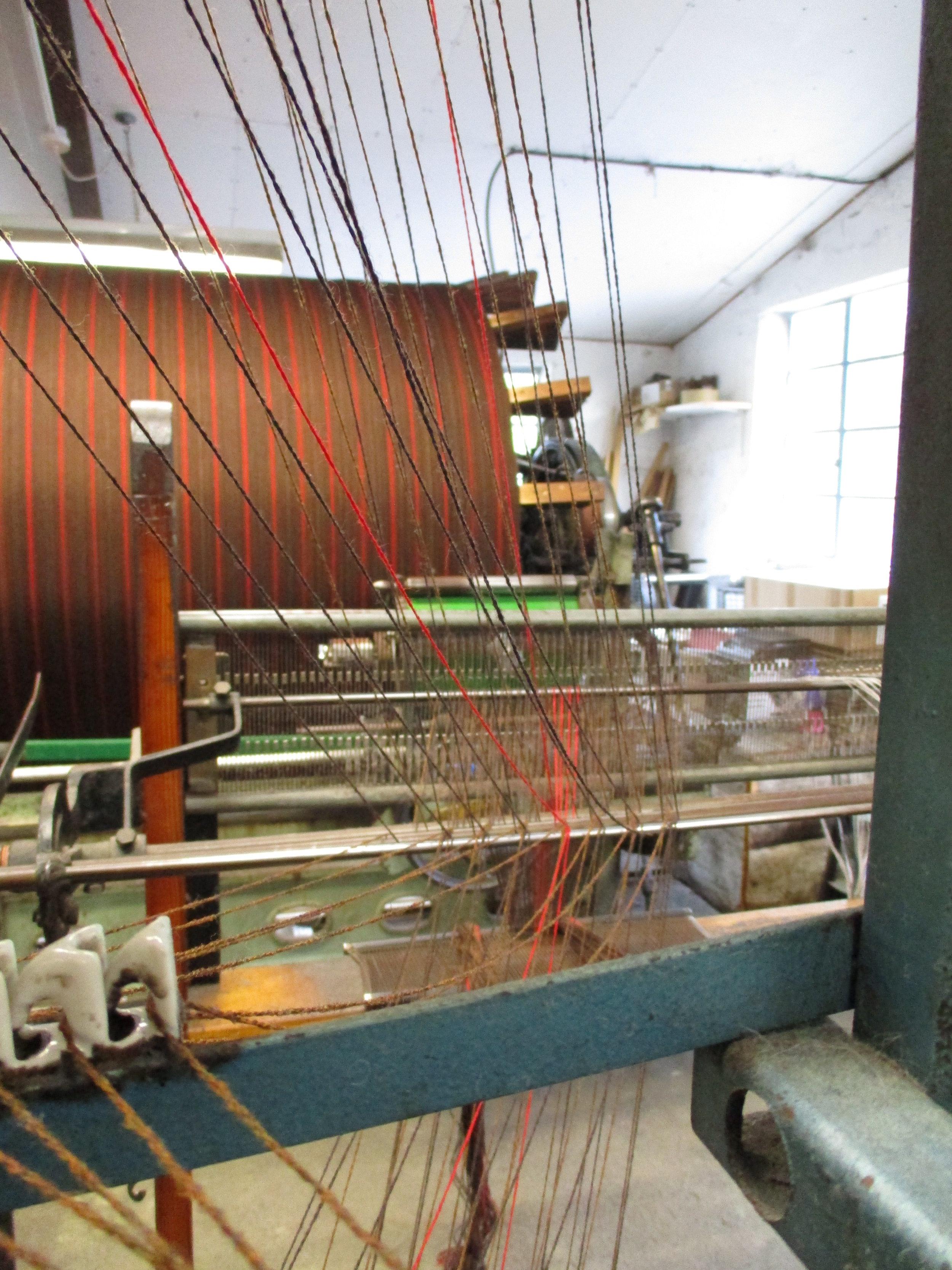 Warp threads 1.JPG