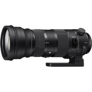 GEAR | Sigma 150-600 mm Sport vs  Contemporary — Deep Green